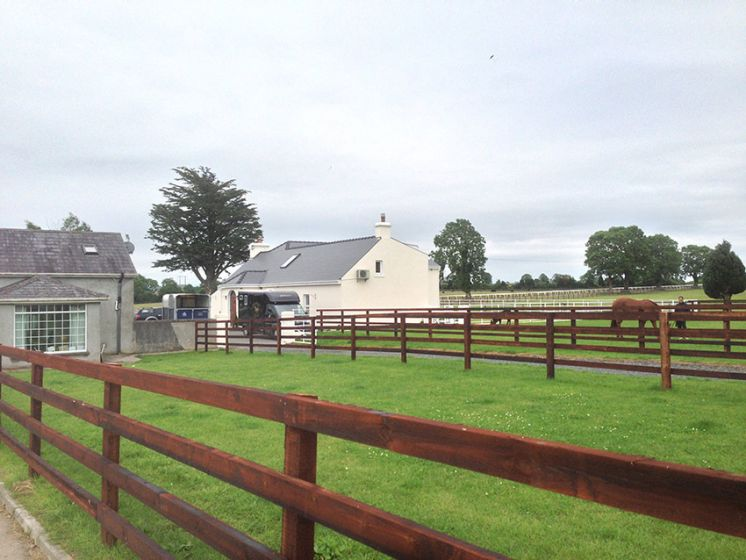 Stud farm in Kildare